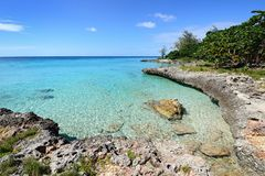 Coral beaches in Cuba. Coral beaches and turquoise water on the wild noon coast of Cuba Stock Images