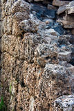 Coral block wall. A rebuild wall made of sand and coral Stock Photography