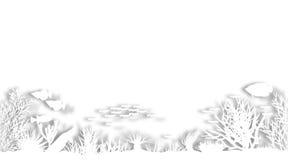 Coral branco Foto de Stock
