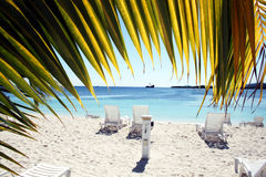 Coral cay Royalty Free Stock Photo