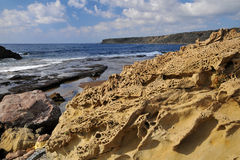 Coral coast. Typical coral coast of Cyprus Stock Photo