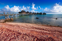 The coral coast and lodges over the ocean. Royalty Free Stock Images