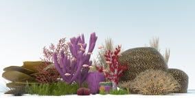 Coral 3D Imagem de Stock Royalty Free