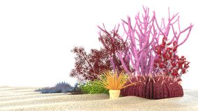 Coral 3D Foto de Stock Royalty Free