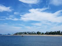 Coral do céu do mar de Trang Tailândia fotos de stock royalty free