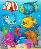 Coral fauna theme image 3 Stock Image