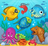 Coral fauna theme image 6. Eps10 vector illustration Royalty Free Stock Images