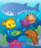 Coral fauna topic image 4 Stock Photos