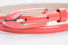 Coral female belt. buckle Royalty Free Stock Images