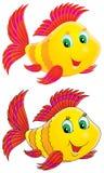 Coral Fish Royalty Free Stock Image