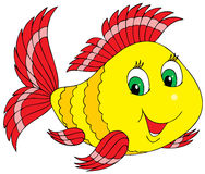 Coral fish. Colorful coral fish with happy smile Stock Images
