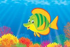Coral Fish royalty free illustration