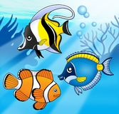 Coral fish collection in blue sea. Color illustration Stock Images