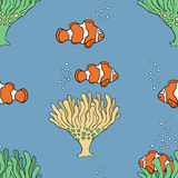 Coral fish set Royalty Free Stock Photo