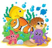 Coral fish theme image 1 Stock Images