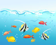 Coral fish under water royalty free illustration