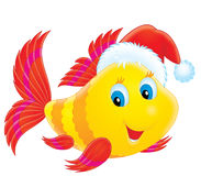 Coral fish wearing a Christmas cap. A funny fish wears a Christmas cap like Santa Claus Royalty Free Stock Photography