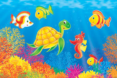 Coral fishes, turtle and seahorse stock photo