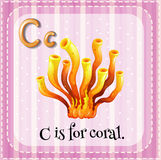 Coral. Flashcard letter C is for coral Royalty Free Stock Photos