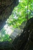 Coral formation of narrow steep Anapala Chasm Niue. Royalty Free Stock Images