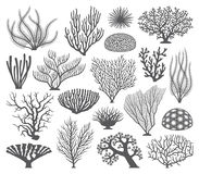 Coral formations Vector Silhouettes Stock Photos