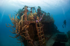 Coral gardens on shipwreck. Underwater Coral gardens off the coast of Roatan Honduras Royalty Free Stock Images