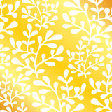 Coral gold background  Stock Photography