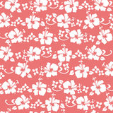 Coral hibiscus pattern. Background Royalty Free Stock Image