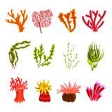 Coral Icons Set Royalty Free Stock Photos