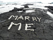 Coral marry me Royalty Free Stock Photo