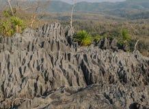 Coral Mountain Thailand Arkivbilder