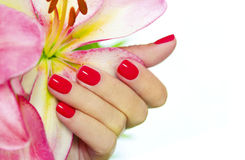Coral Nails. Stock Photos