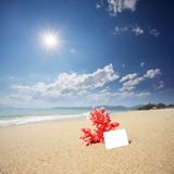 Coral with name card on beach Stock Photo