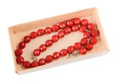 Coral necklace Stock Photos