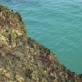 Coral and ocean Stock Photo