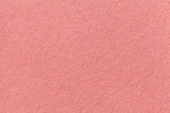 Coral old paper background. Thick cardboard. Royalty Free Stock Images