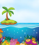 Coral and palm tree on island. Illustration of coral in water and palm tree on island Royalty Free Stock Photos