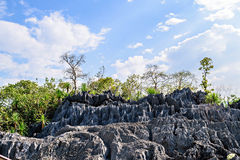 Coral Park Mountain, Doi Phaklong National Park Royalty Free Stock Photography