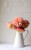 Coral pink dahlias in jug. Coral pink dahlias in a white jug on a white tablecloth against a white brick wall (portrait Royalty Free Stock Image