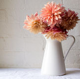 Coral pink dahlias. In a white jug on a white tablecloth against a white brick wall Stock Image