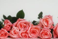 Coral Pink Rose Flower Isolated manojo del ramo de la flor en el fondo blanco Copie el espacio Fotografía de archivo