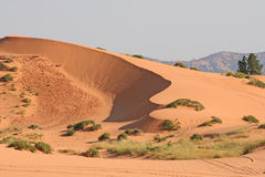 Coral Pink Sand Dune 2 Stock Image
