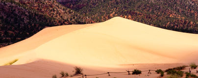 Coral Pink Sand Dunes. State Park is a Utah state  that features coral-hued sand dunes located beside red sandstone cliffs Royalty Free Stock Photo