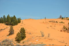 Coral Pink Sand Dunes Stock Images
