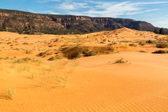 Free Coral Pink Sand Dunes State Park Royalty Free Stock Images - 80489409