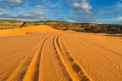 Free Coral Pink Sand Dunes State Park Stock Photo - 80489800