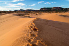 Free Coral Pink Sand Dunes State Park Stock Image - 80489821