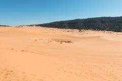 Coral Pink Sand Dunes. State Park, Kanab, Utah Royalty Free Stock Images
