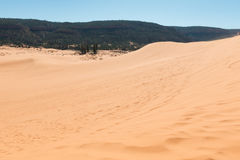 Coral Pink Sand Dunes Royalty Free Stock Photo