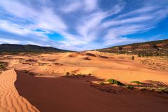 Coral Pink Sand Dunes State Park.  Stock Images
